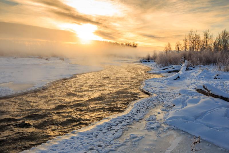 Golden Morning Over the Gallatin River. 6583