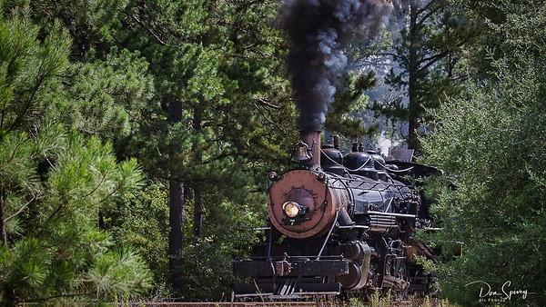 Texas State Railroad 135th Anniversary