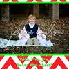 Christmas Card Samples :