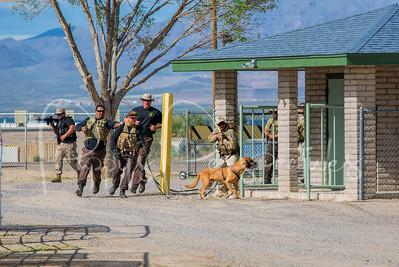 AZ Dept. of Corrections Hound Camp 2013