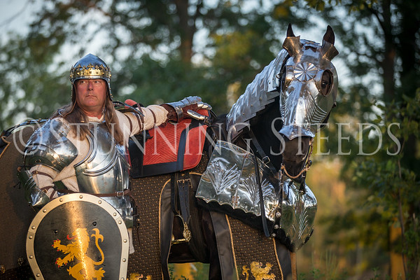 Ytzen LSI - Knight in shining armor