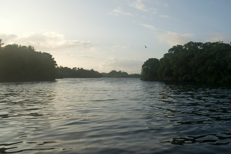 Morning on the Lake, Rennell Island - Solomon Islands