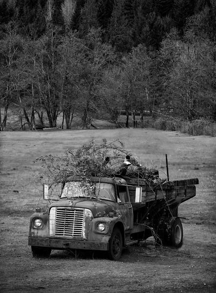 XK4L9808 old truck composite.jpg