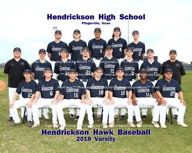 2018 Hawk Baseball