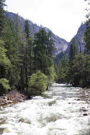 Yosemite Falls May 05