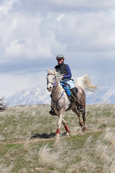 Antelope Island endurance ride in Utah