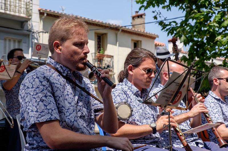 A week's holiday based at St Nazaire near Perpignan, in southern France.  Dancing the Sardana in Céret on Saturday 18 July 2015.