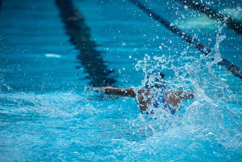 lcs_swimming_kevkramerphoto-105.jpg