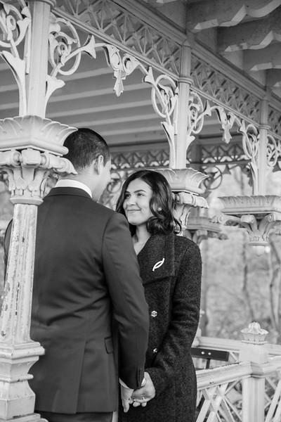 Central Park Wedding - Leonardo & Veronica-62.jpg