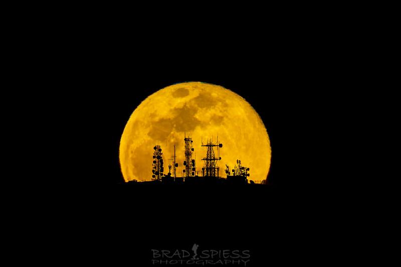 Lunar Signals