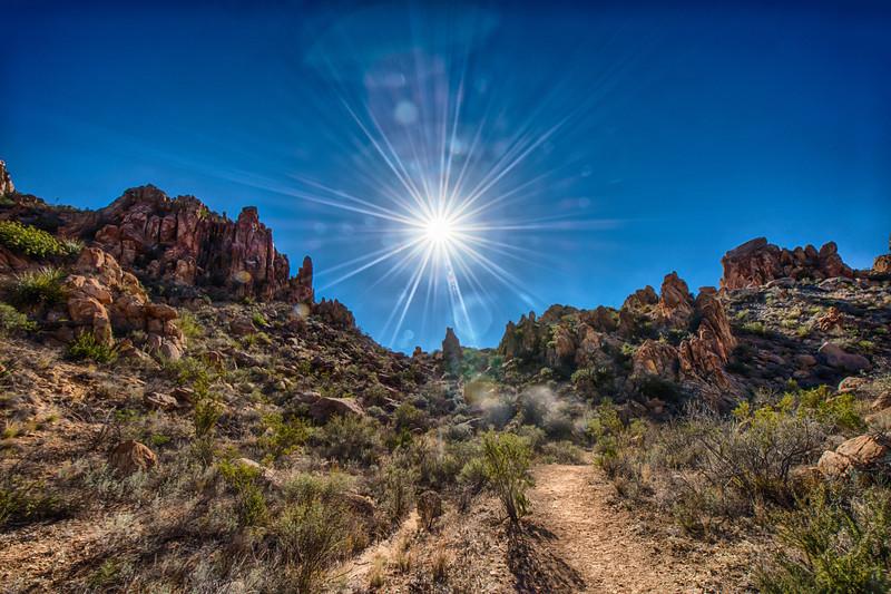 Sun Flare!.jpg