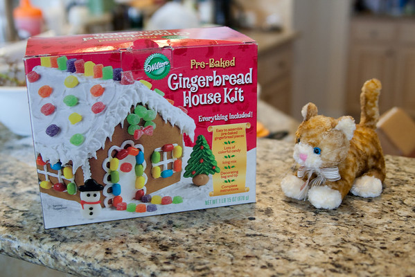 Gingerbread House Tradition