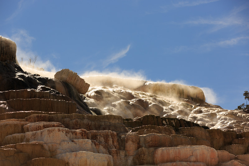 Mammoth Hot Springs 005