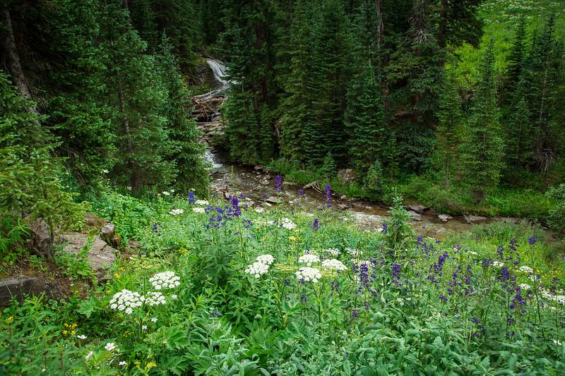 Telluride, Colorado 2016-1452.jpg