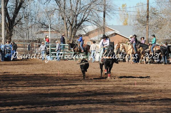 11-17-13 14/18 Steer Stopping