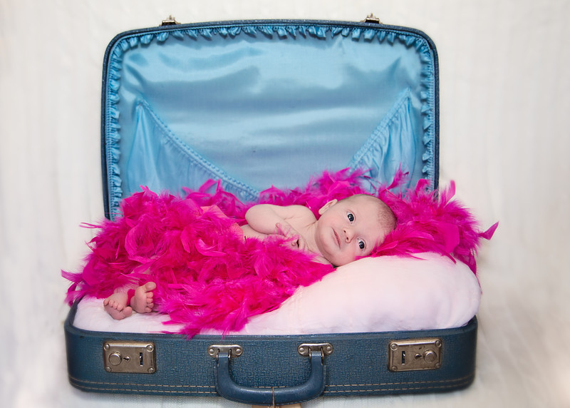 Suitcase and Feathers (1 of 1).jpg