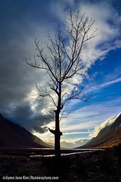 Scotland-2285.jpg