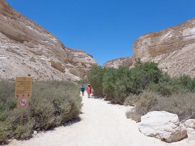 Streams in the Desert 16