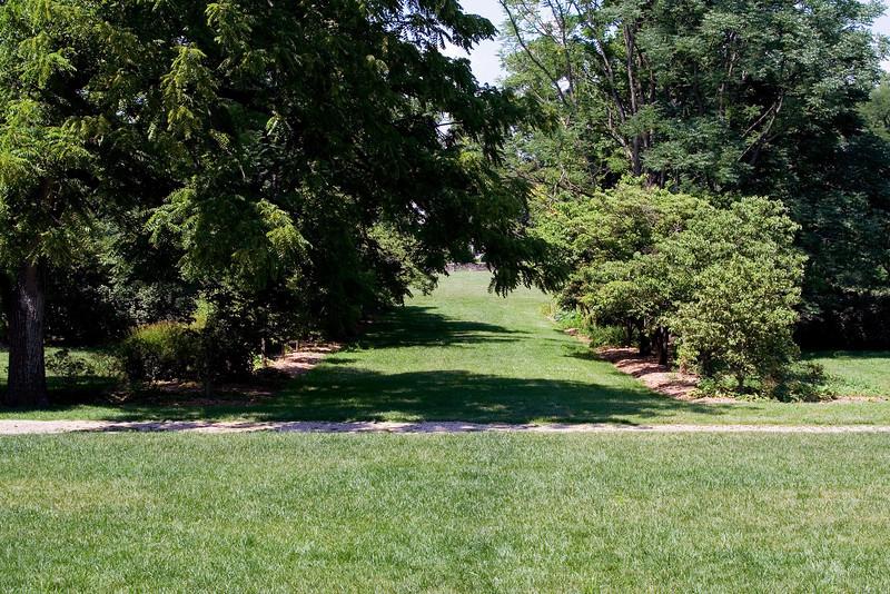 Grass Pathway.jpg