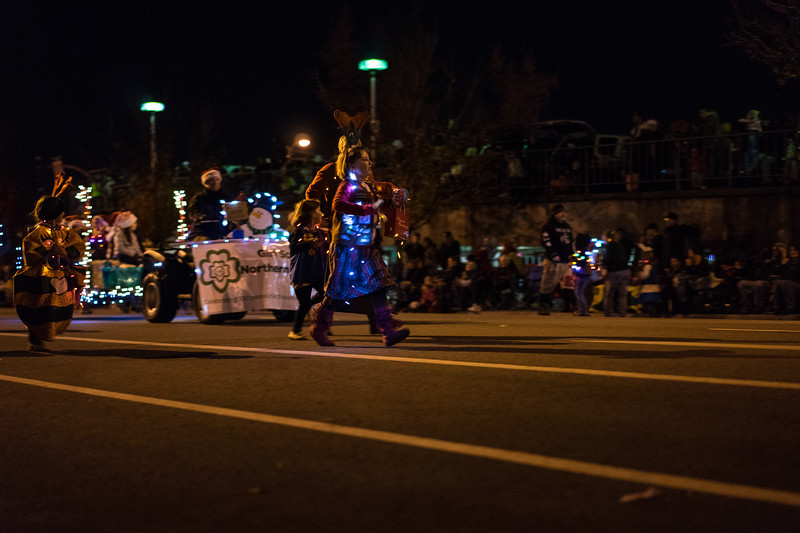 Light_Parade_2015-08087.jpg