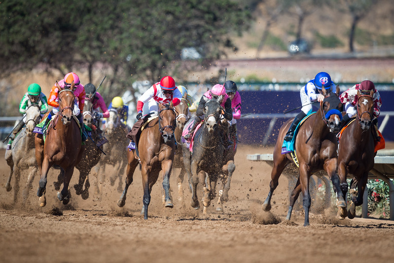Calendonia Road (Quality Road) wins the BC Juvenile Fillies (G1) at Del Mar on 11.4.2017. pink and orange silks far left in photo.  Mike Smith up, Ralph Nicks trainer, Zoom and Fish Stable and Charlie Spiring and Newtown Anner Stud owners.