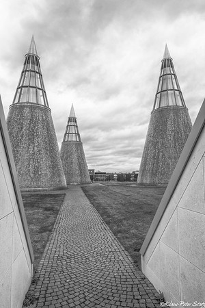 3- Bonn Museums