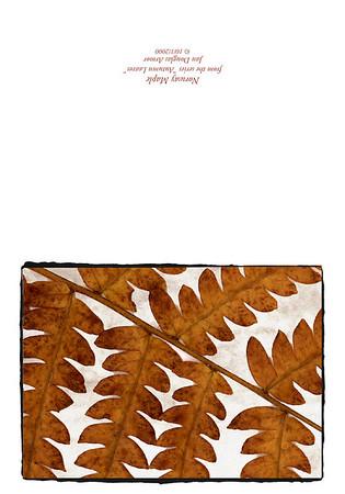 Fall Of Leaf Slide Show