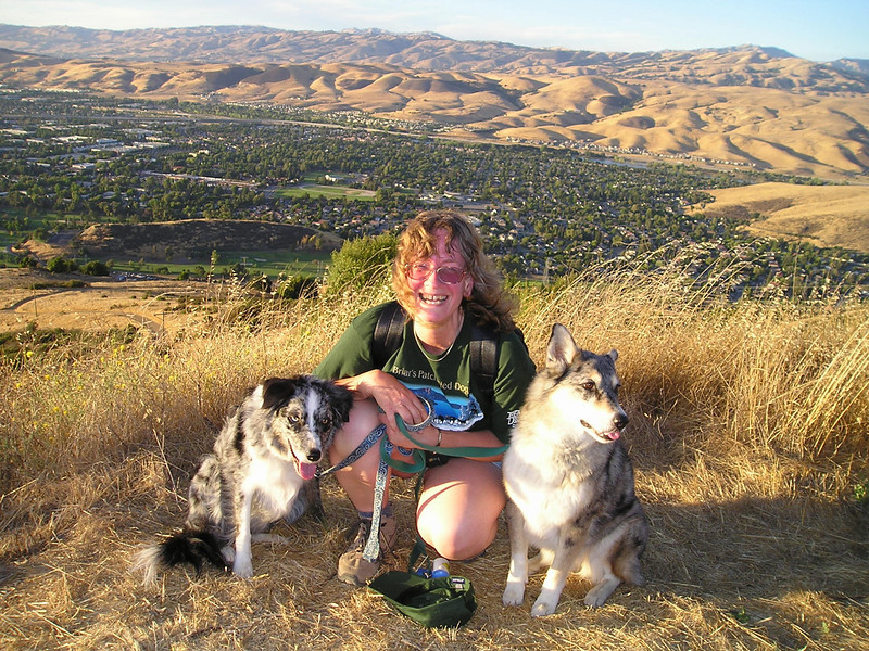 Yay! We did it! 950 feet in elevation, just under two miles, in just over an hour! Boost, Ellen, and Tika on Coyote Peak, overlooking San Jose.