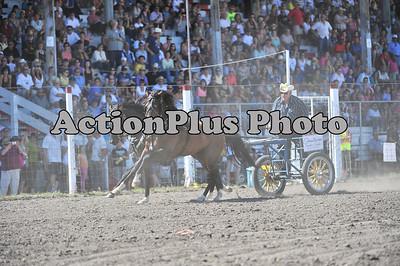 MS2011 Sunday Wagons