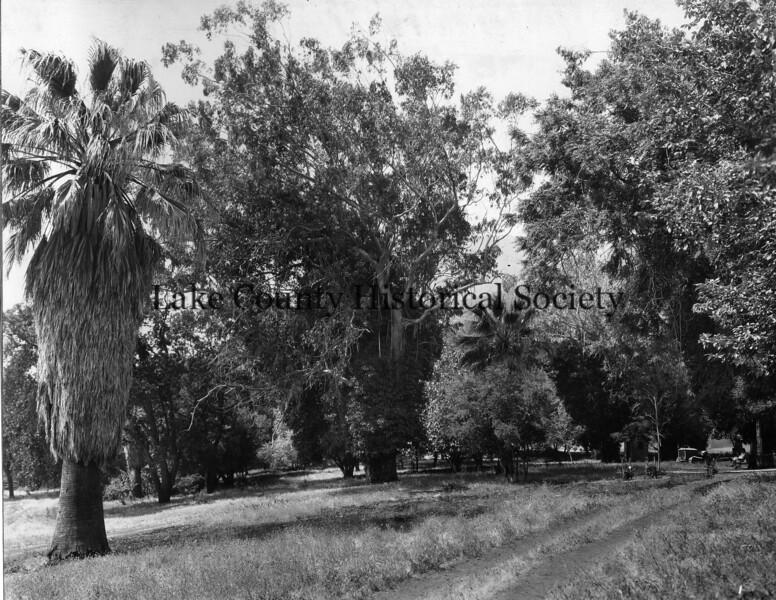 Buckingham Park -1.jpg