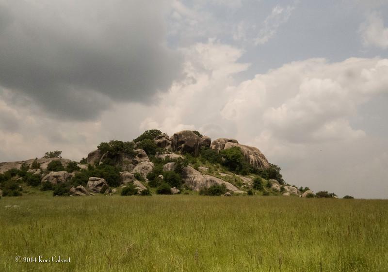 Lions Serengeti - K-4.jpg