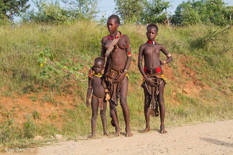 Hammer  tribe  - שבט ההאמר