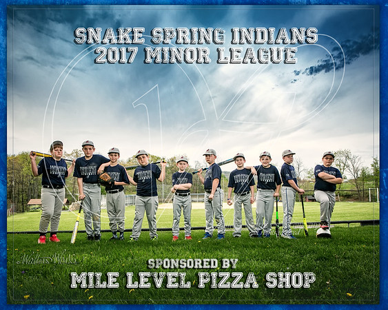 Snake Spring Indians 2017 Navy Minor League