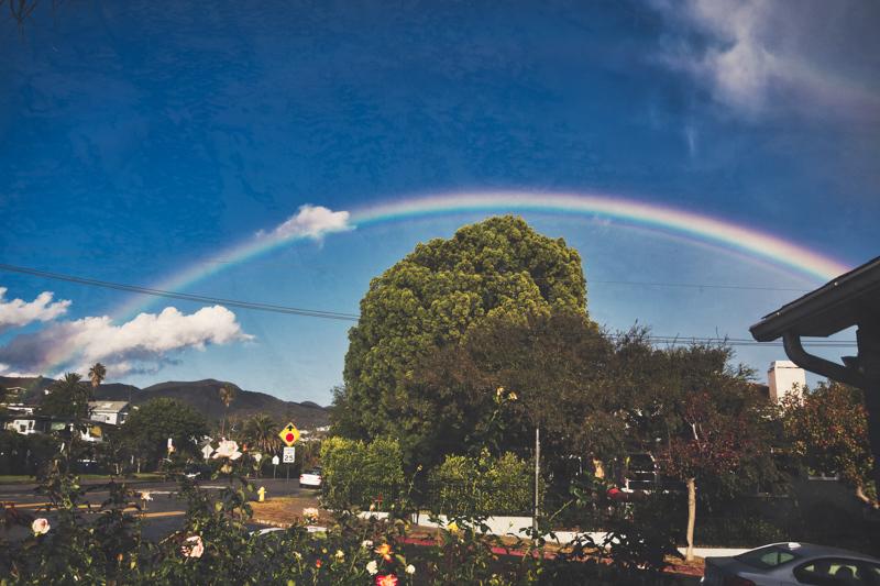 November 29 - Rainbow in the neighborhood.jpg