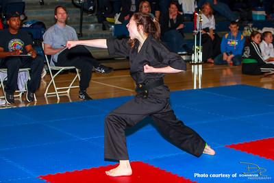 2014 Southern Ontario Open