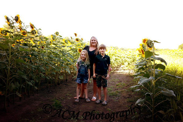 The Brewer Family - Sunflower Field