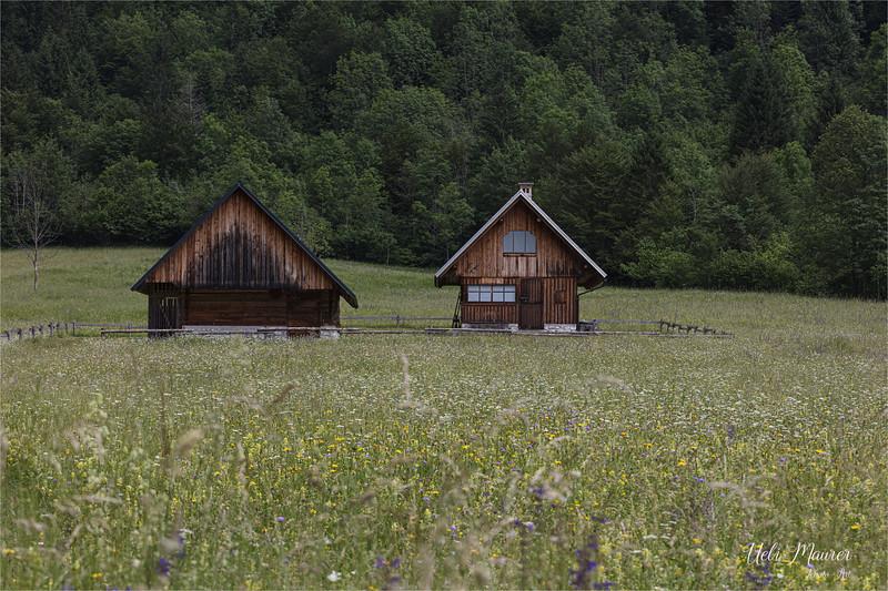 2019-06-18 Triglav Slowenien 2. Tag - 0U5A8538.jpg