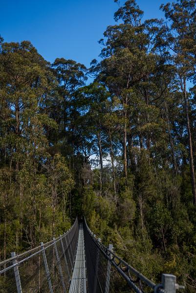 Tasmania-60.jpg