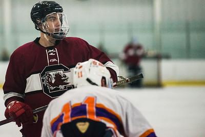 Gamecock Hockey