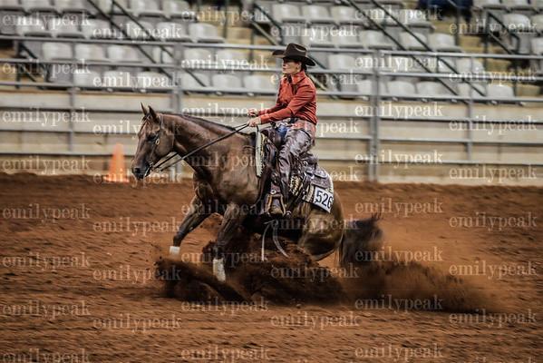 American Stock Horse Association