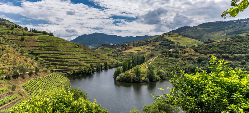 Douro Winery Panorama Reduced.jpg