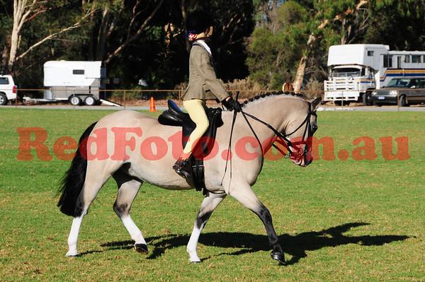 Riverside Park Pony Club ShowHorse Day
