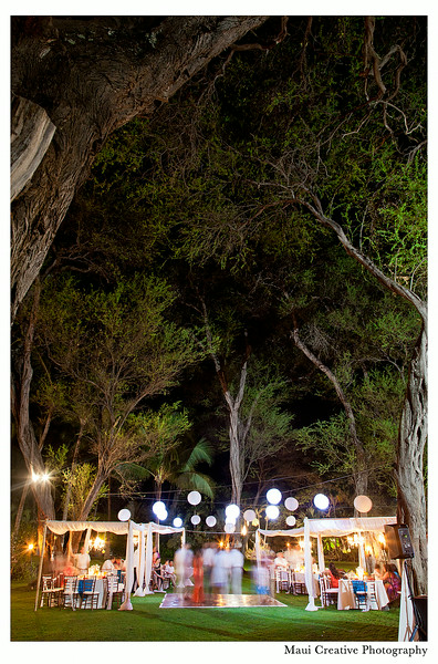 Maui_Wedding_Photographers_Sugarman_Estate_525.jpg