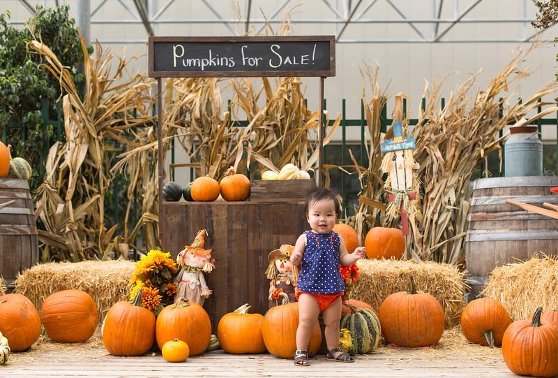 oliver_ella_pumpkin_patch-43.jpg