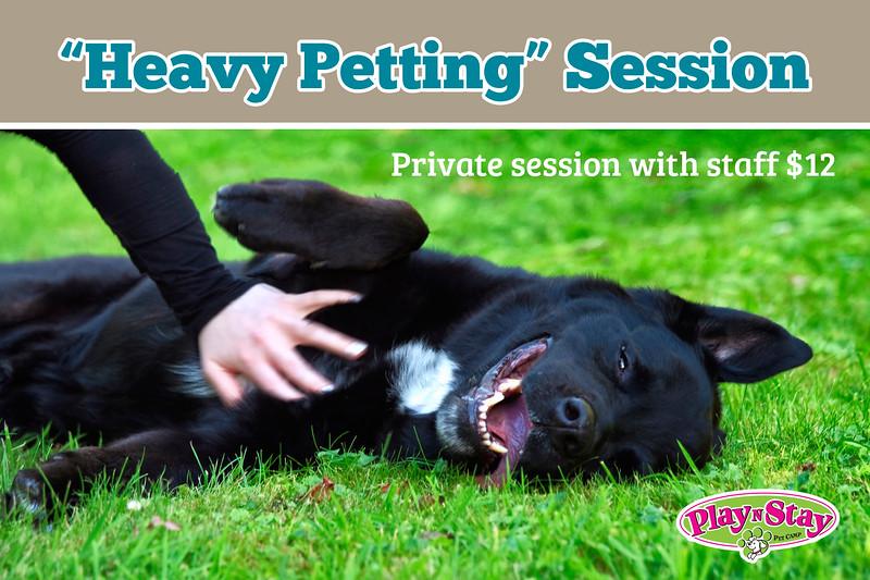 Heavy-Petting.jpg