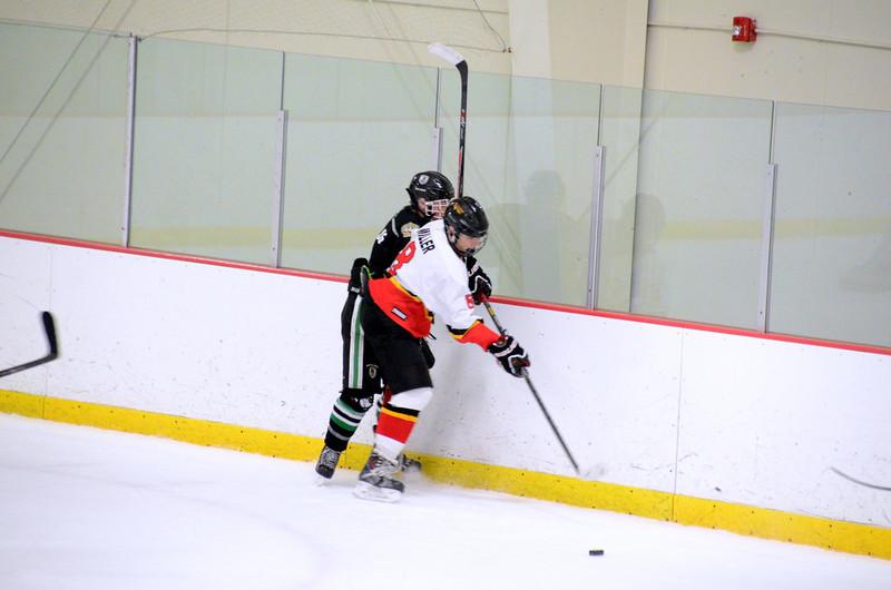 140111 Flames Hockey-149.JPG