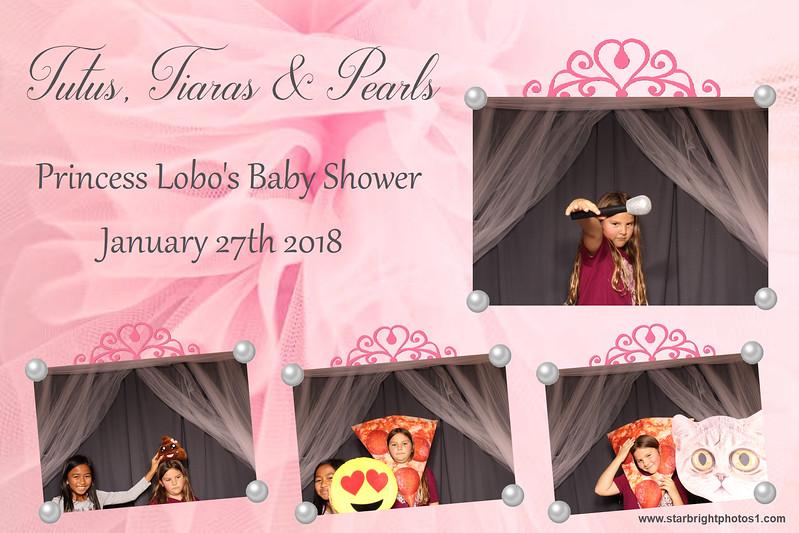 Lobo Baby Shower_15.jpg