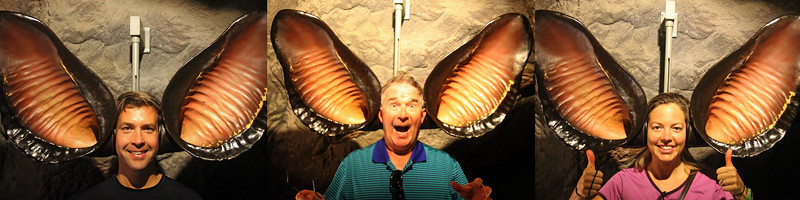 Desert Museum - trying on some bat ears.  You can actually hear better with them on!