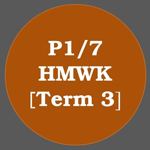 P1/7 HMWK T3
