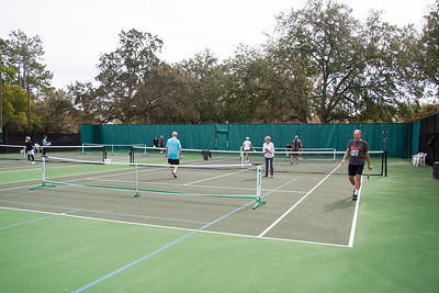 Timber Greens Pickleball